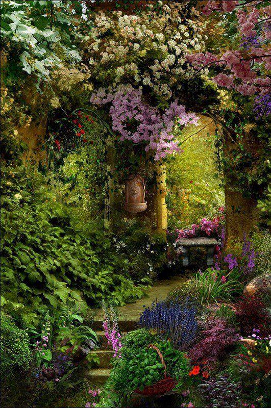 Jardin                                                                                                                                                                                 Plus