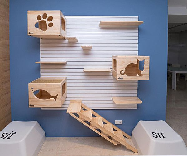 CatsWall is a modular aluminum wall hanging system. The Modular CatsWall system includes everything you need to assemble at home or in shelters. CatsWall's modular design makes it easy for you to add