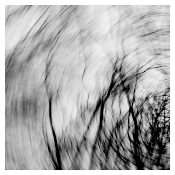 silva-magica-3