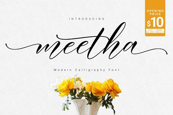 Meetha Script (30% OFF) by FadeLine on @creativemarket