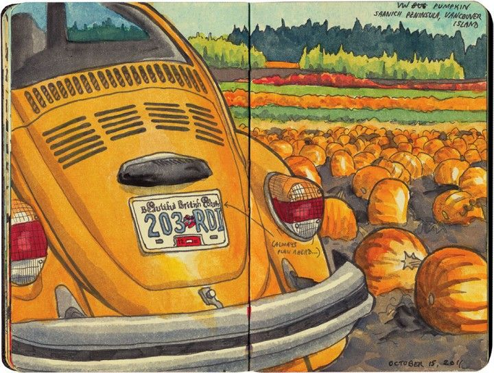 Pumpkin patch sketch by Chandler O'Leary