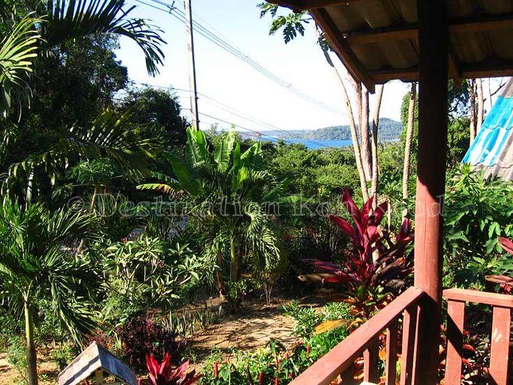 Lush garden at Jimmy Hut (Koh Kood, Thailand)