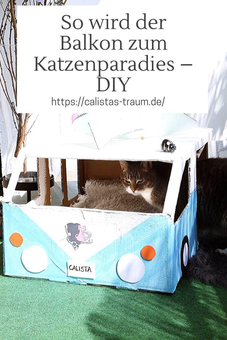 23+ So wird der Balkon zum Katzenparadies mit FELIX® Soup   Calistas ... Kollektion