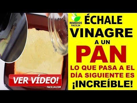ECHALE VINAGRE A UN PAN Y TIRALO EN EL BOTE DE LA BASURA LO QUE PASA AL DIA SIGUIENTE ES INCREIBLE - YouTube
