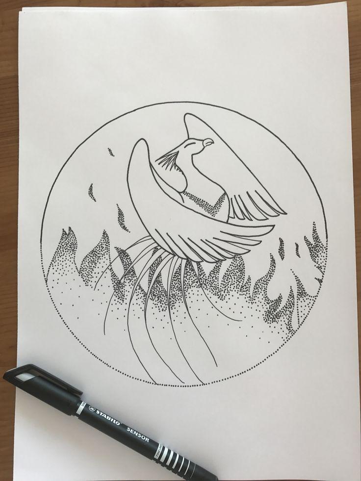 The 4 elements - fire (based on a phoenix drawing from Pinterest )
