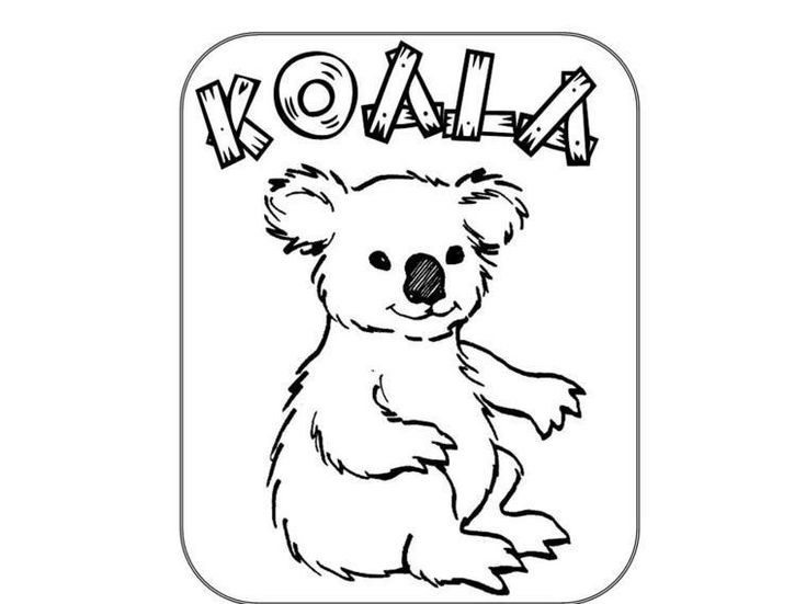 Koala Bears Coloring Pages