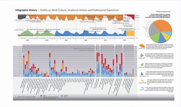 LD Infographic Work Experience - Portfolio