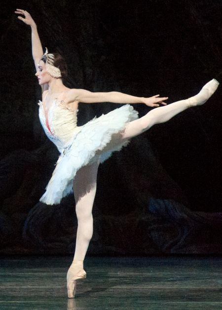 204 best dancing images on pinterest dance ballet ballerinas and irina dvorovenko as odette american ballet theatre fandeluxe Gallery