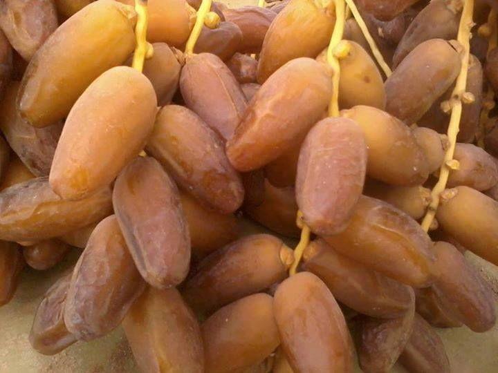 dattes algérienne recolte 2014 - fruits et légumes --bon jour pour tous le monde nous dis posons de grandes quantites de dattes deglet nour  produits algérienne de bonne qualité 1er choix branchée dans différents poids surtout 1kg --et nos prix sont concurrentielles et nos offres sont pour ceux qui apprécié