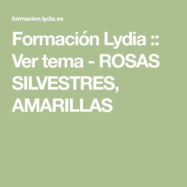 Formación Lydia :: Ver tema - ROSAS SILVESTRES, AMARILLAS