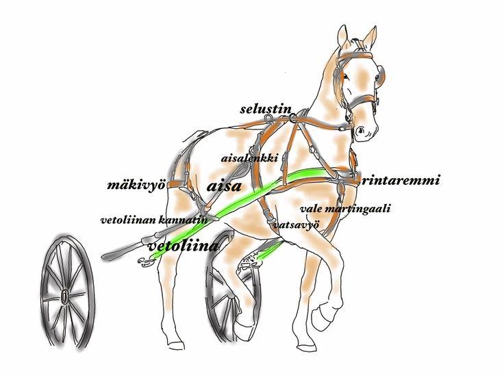 Valjakkovaljastus: video, ohjeet, valjaiden osat   mw hevospalvelut