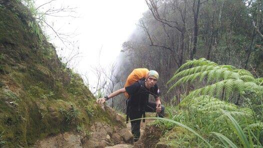Mt.burangrang