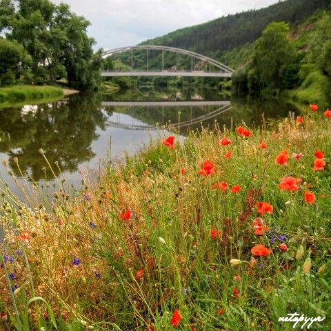 Berounka River - Karlštejn (CZ)