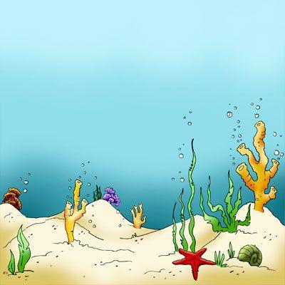 Seaweed Sea Floor in Digital images