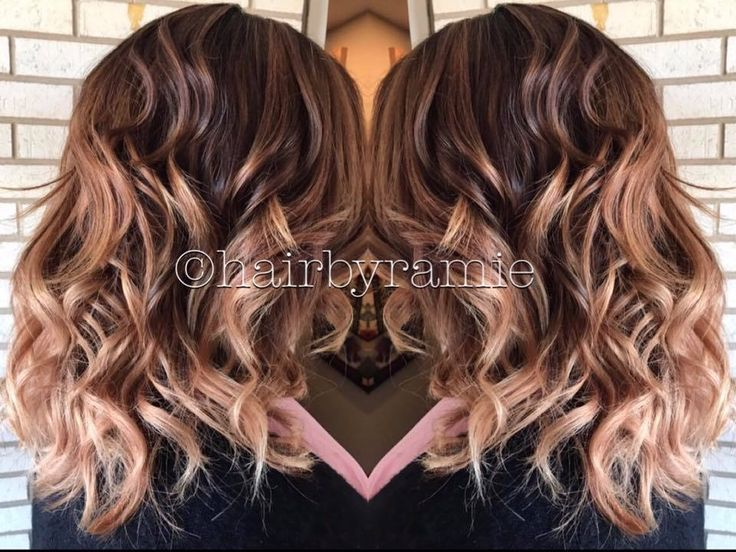 Hairbyramie Hair Highlights Blonde Brunette Balayage