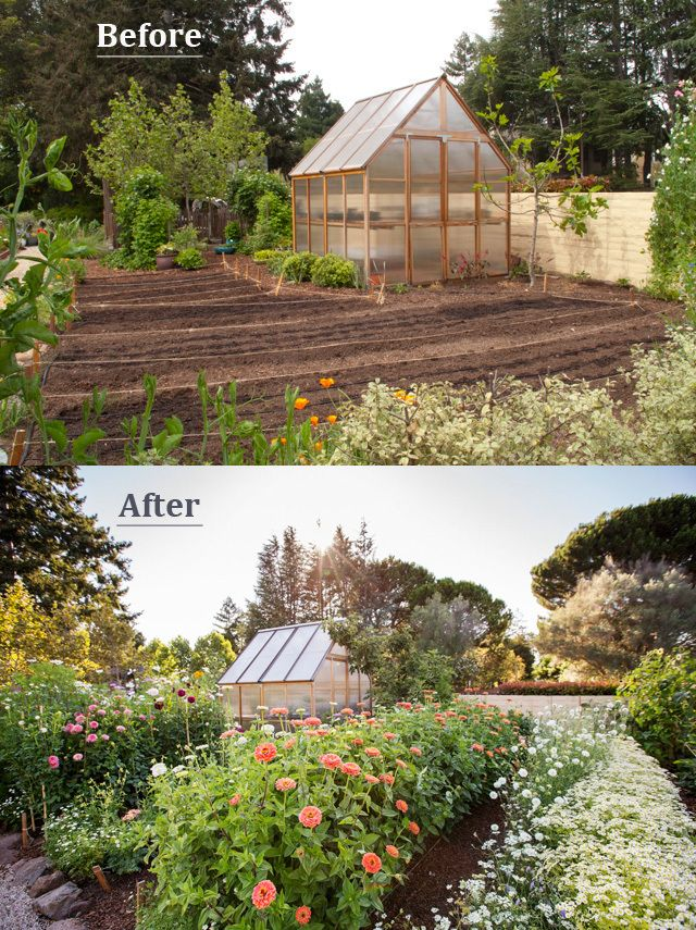 BeforeAfter Shots of Sunset Magazine cut flower garden