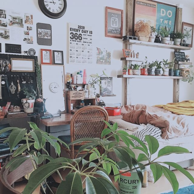 セリア/niko and… /MERCURY/ツピタンサス/ディアウォール/観葉植物…などのインテリア実例 - 2016-01-16 09:03:01 | RoomClip(ルームクリップ)