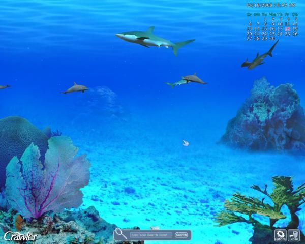Google Image Result for http://screenshots.en.sftcdn.net/en/scrn/70000/70498/crawler-3d-marine-aquarium-screensaver-17.jpg