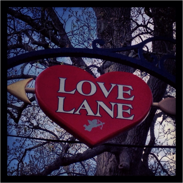 Love Lane Kitchen: 538 Best Images About Long Island On Pinterest