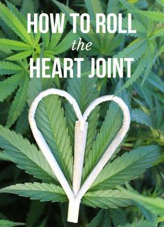 The heart joint makes its rounds around the internet a few times a year. We got the creator of the original heart joint to make a tutorial so everyone else can make one too!