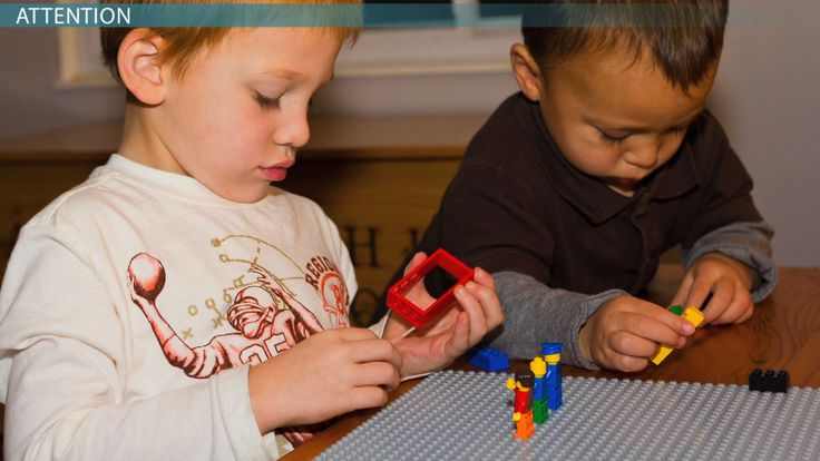 Children develop cognitive skills rapidly in the first few years of life and build on them progressively throughout grade school. In this lesson,...