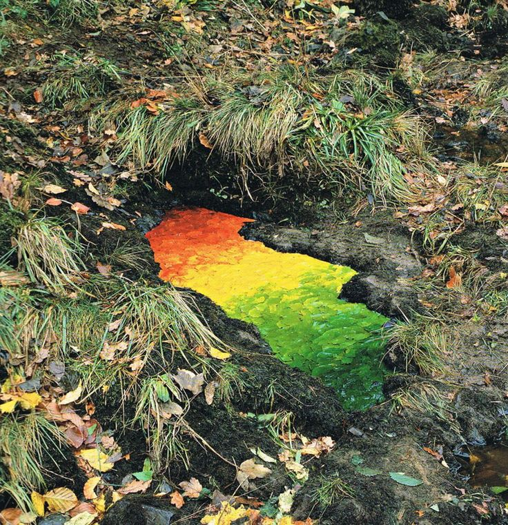 Le Land Art magique de Andy Goldsworthy (4)