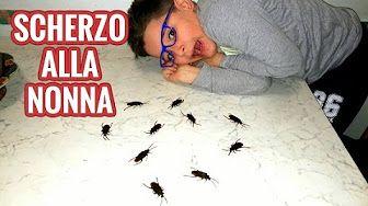 Dal Vivo Con Il Mio CREEPER - Leo Toys - YouTube