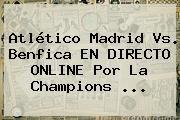 http://tecnoautos.com/wp-content/uploads/imagenes/tendencias/thumbs/atletico-madrid-vs-benfica-en-directo-online-por-la-champions.jpg Champions League. Atlético Madrid vs. Benfica EN DIRECTO ONLINE por la Champions ..., Enlaces, Imágenes, Videos y Tweets - http://tecnoautos.com/actualidad/champions-league-atletico-madrid-vs-benfica-en-directo-online-por-la-champions/