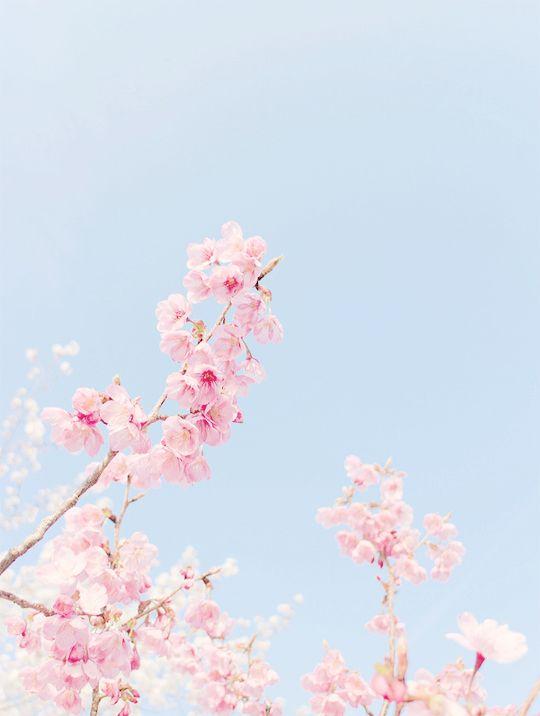 Light Blue Aesthetic Sky