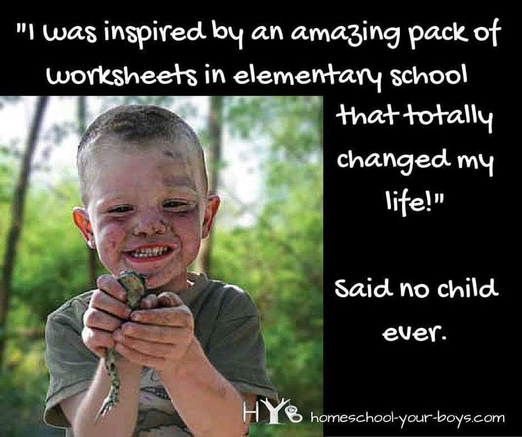 Memes. They can cram an entire argument into one witty frame.  Homeschoolers can hold their own when it comes to great memes. Here is a list of 100 great homeschool memes from some great bloggers a…