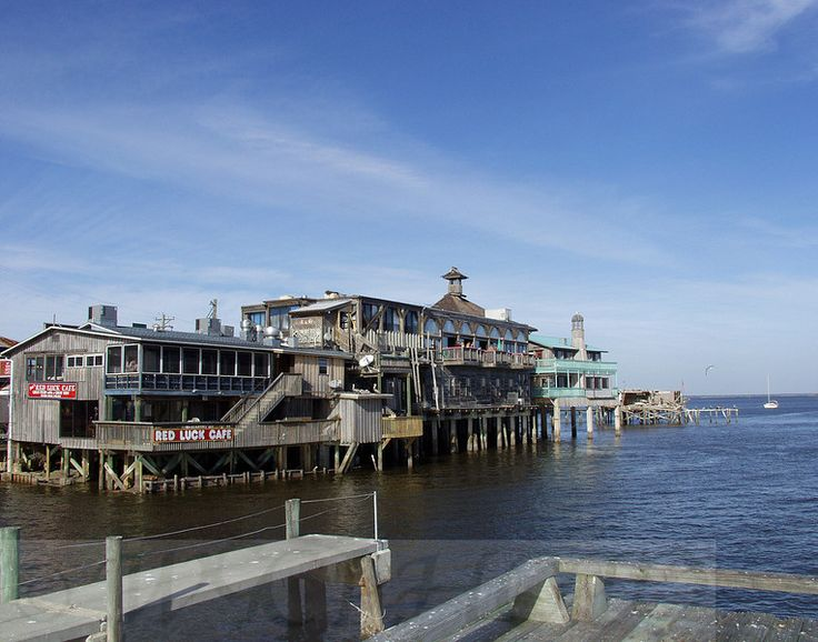 Seafood shops and florida on pinterest for Cedar key fishing