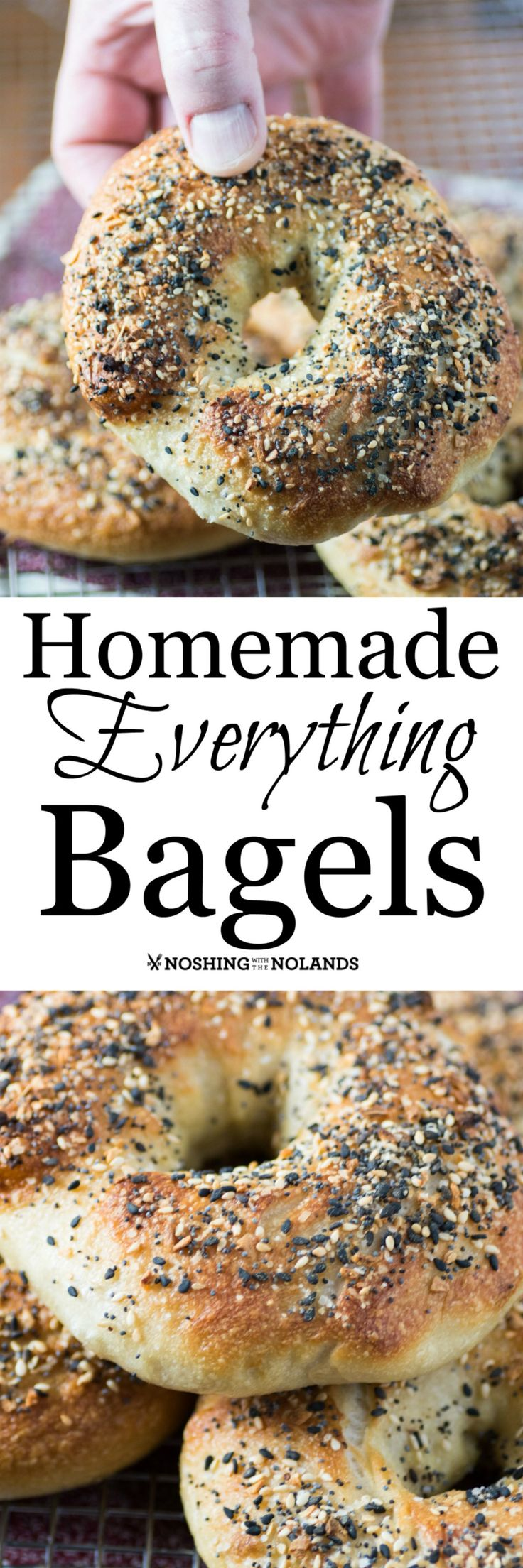 Homemade Everything Bagels by Noshing With The Nolands has all the flavor you love with that wonderful chewy texture!