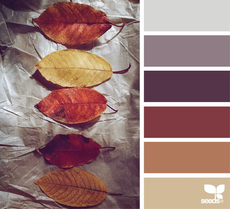 Color palette for my space