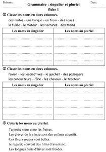 CE1 - Grammaire - Singulier / pluriel