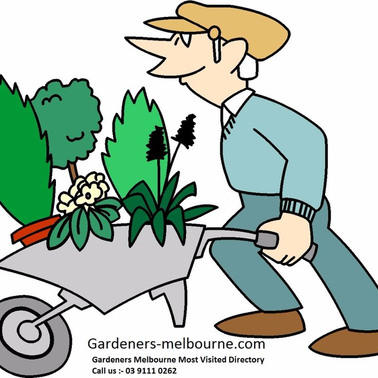 Gardening Services In Melbourne Best Gardening Services offered by a Professional Gardener in Melbourne, Tips to maintain, Prosperity, Cost of Gardening http://www.gardeners-melbourne.com/