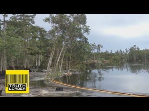 Giant sinkhole swallows trees in Assumption Parish, Louisiana - It's funny listening to British people talk about Louisiana, but the footage of those 40 ft trees totally disapearing is AMAZING