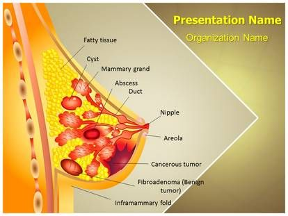 55 best cancer powerpoint ppt template images on for Breast cancer powerpoint presentation templates