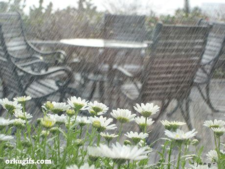 even in the rain...