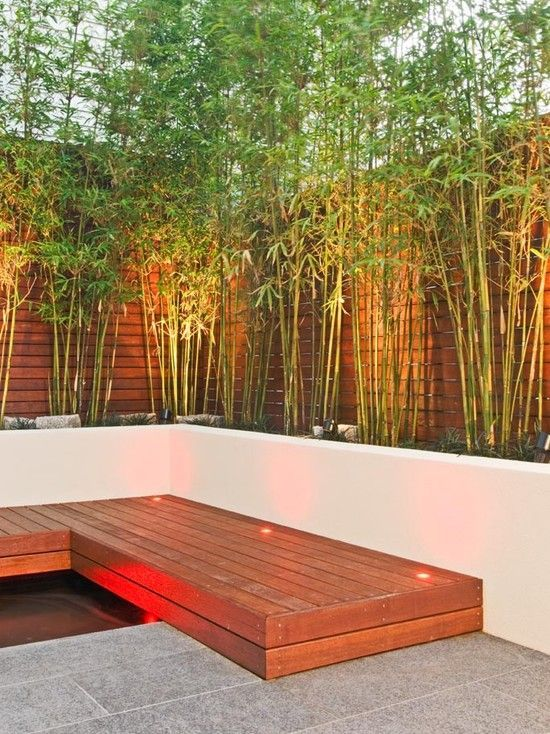 garden landscape lighting bamboo trees wooden bench