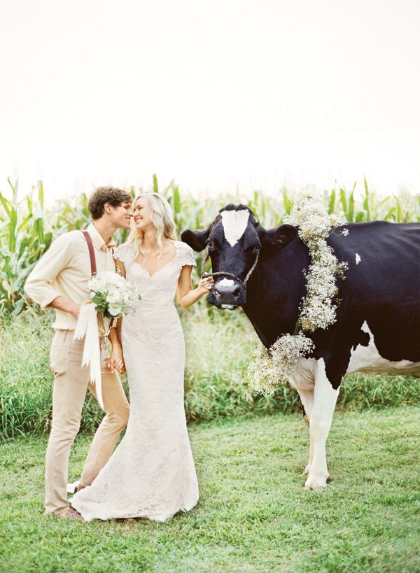 cow portrait :) | KT Merry #wedding, #hair and #makeup by Makeup for Your Day @Makeup for Your Day