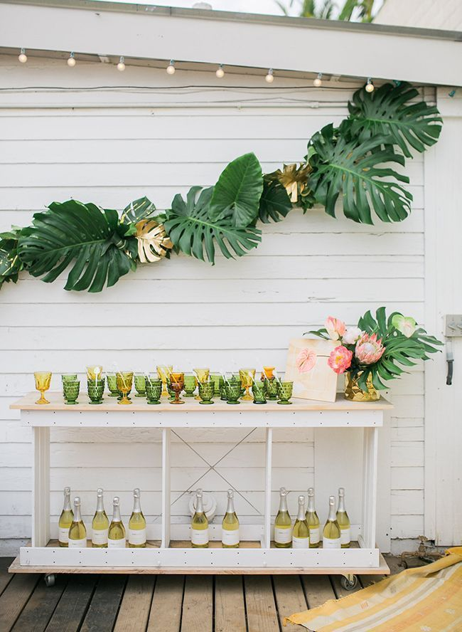 party drinks cart, outdoor, cheese plant