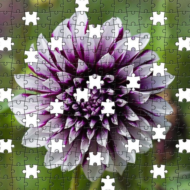 Free Jigsaw Puzzle Online - Flower
