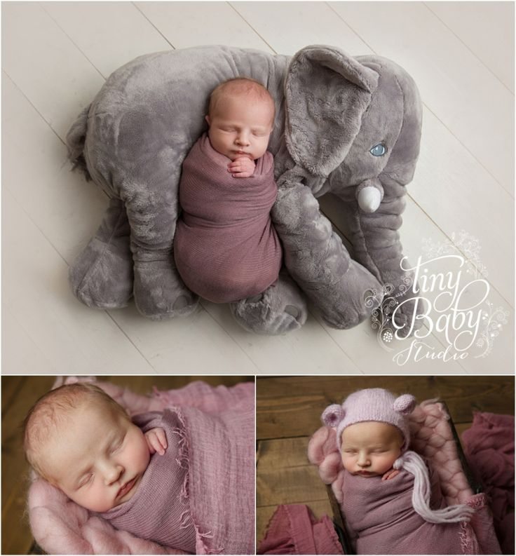 Newborn Photographer Newcastle