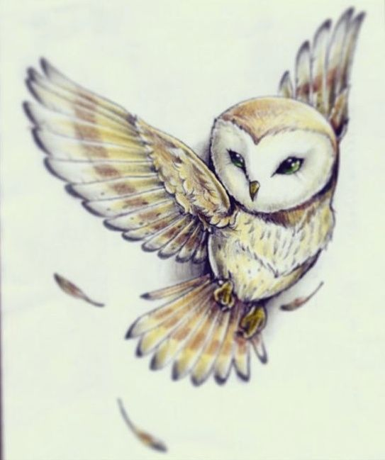 owl tattoo reminds me of the one in labyrinth tattoo