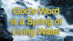 God's Word is an Inexhaustable Spring of Living Water  Daily Catholic readings and Meditations