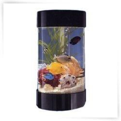 17 best ideas about 3 gallon fish tank on pinterest for Self cleaning fish tank walmart