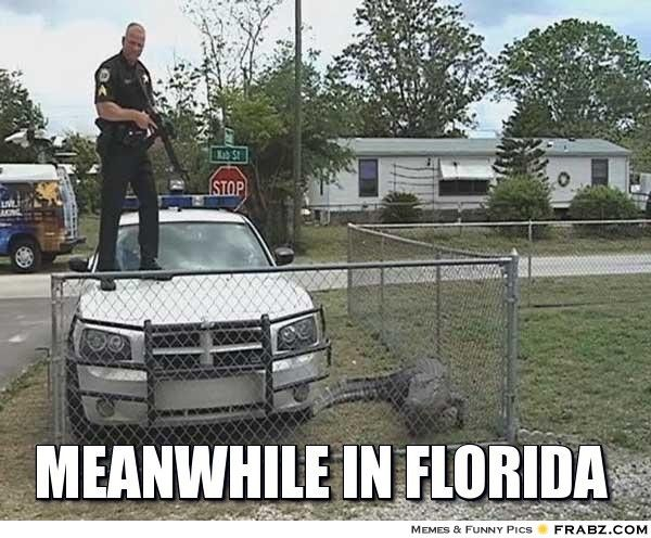 meanwhile in florida... - Meme Generator Captionator