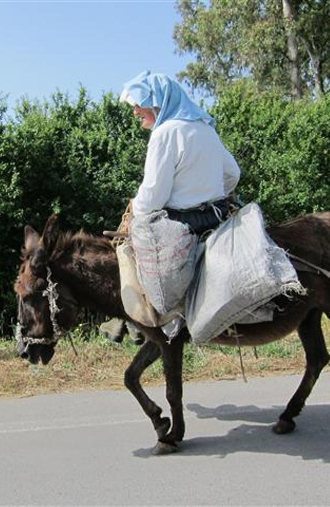 Not so many Yayas on donkeys now,  shame -maybe in the South,  Corfu Island, Greece