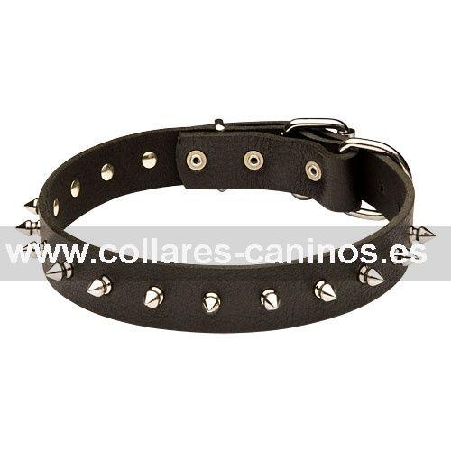 Ecónomico estrecho collar de cuero decorado con pinchos de acero cromado para perros Cane Corso - S33S