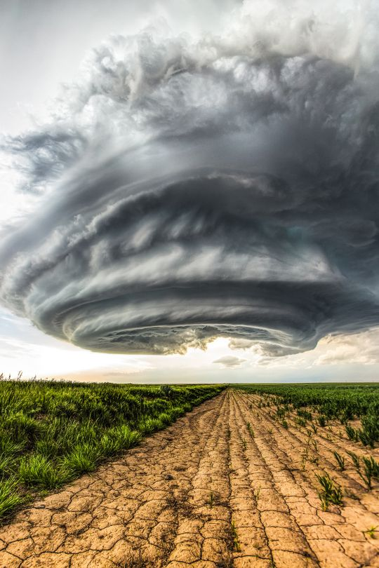 The great twisting Julesburg supercell in Colorado. This storm was tornado-warned and produced large hail.  Or, it's the mother ship.